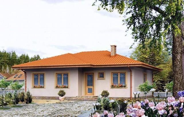 Проект одноэтажного дома 3