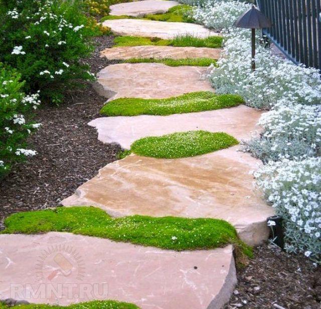 Декортивный мох и природный камень